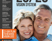 20 20 Vision System