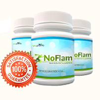 Noflam Anti-Arthritis Herbal Supplement