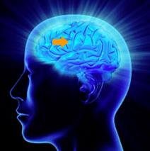 Ty Summers Abundant Mind Visualization Videos