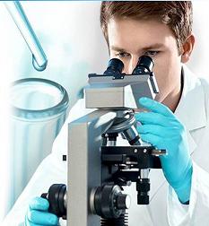 Zynev Virility Supplement