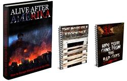Alive After Amerika