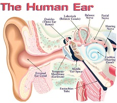 reverse hearing loss review